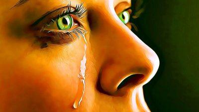 Вътрешният плач